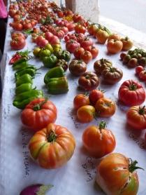 Cata de variedades de tomates