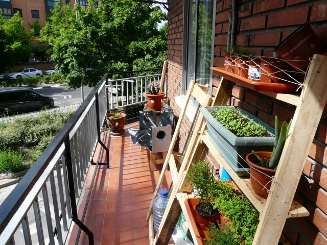 SunLorenzo at the balcony.JPG